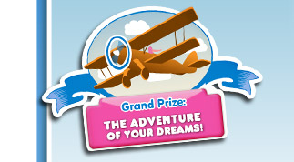 Grand Prize: The Adventure of your Dreams!